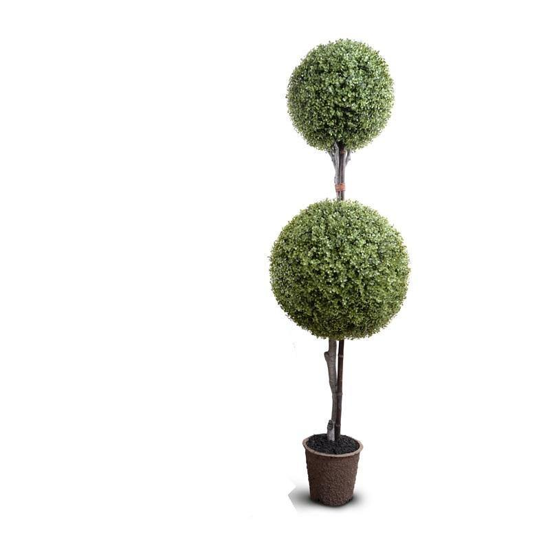 Boxwood Double Ball Topiary - New Growth Designs