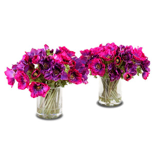 Anemone Arrangement - New Growth Designs