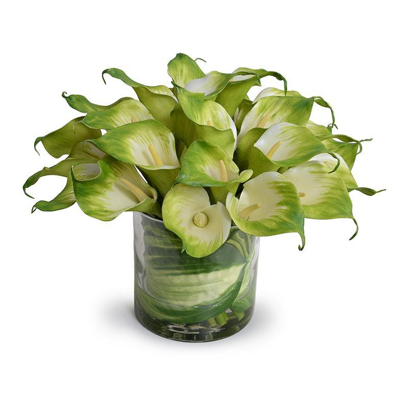 Calla Lily Arrangement in Leaf Lined Glass - Green - New Growth Designs