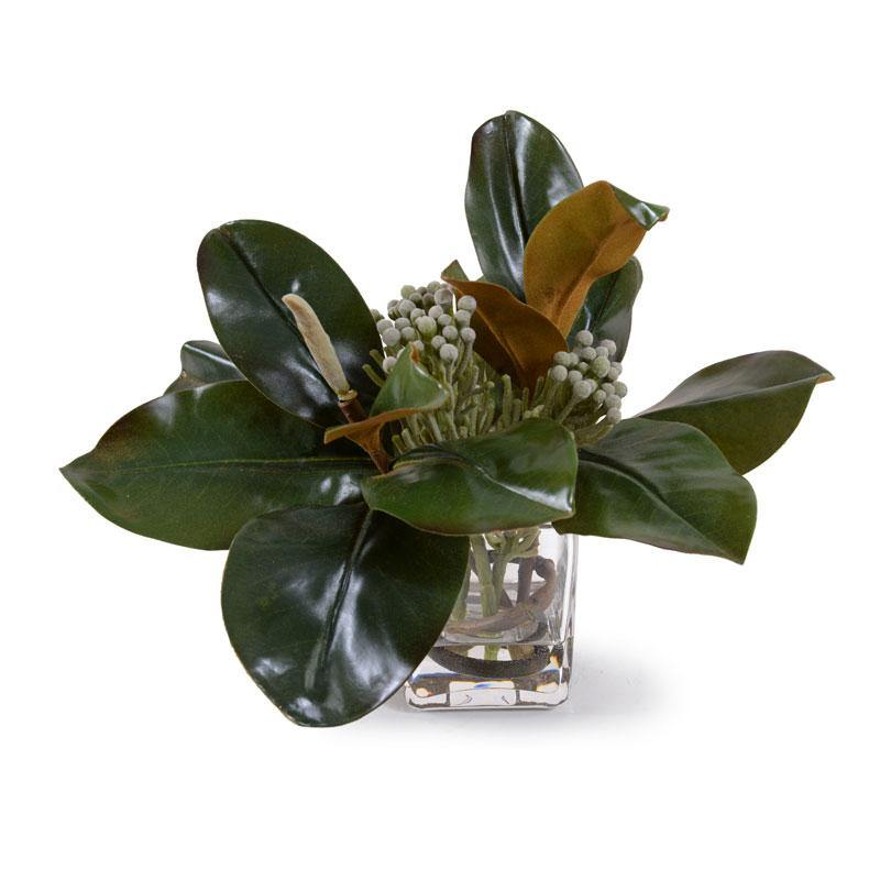 Magnolia, Silver Brunia - New Growth Designs