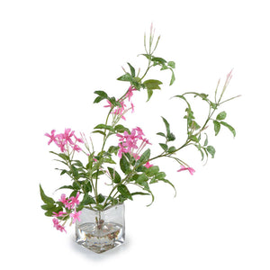 Blooming Jasmine Vine - New Growth Designs