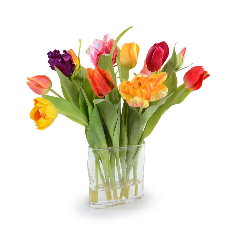 Assorted Tulip Arrangement - New Growth Designs