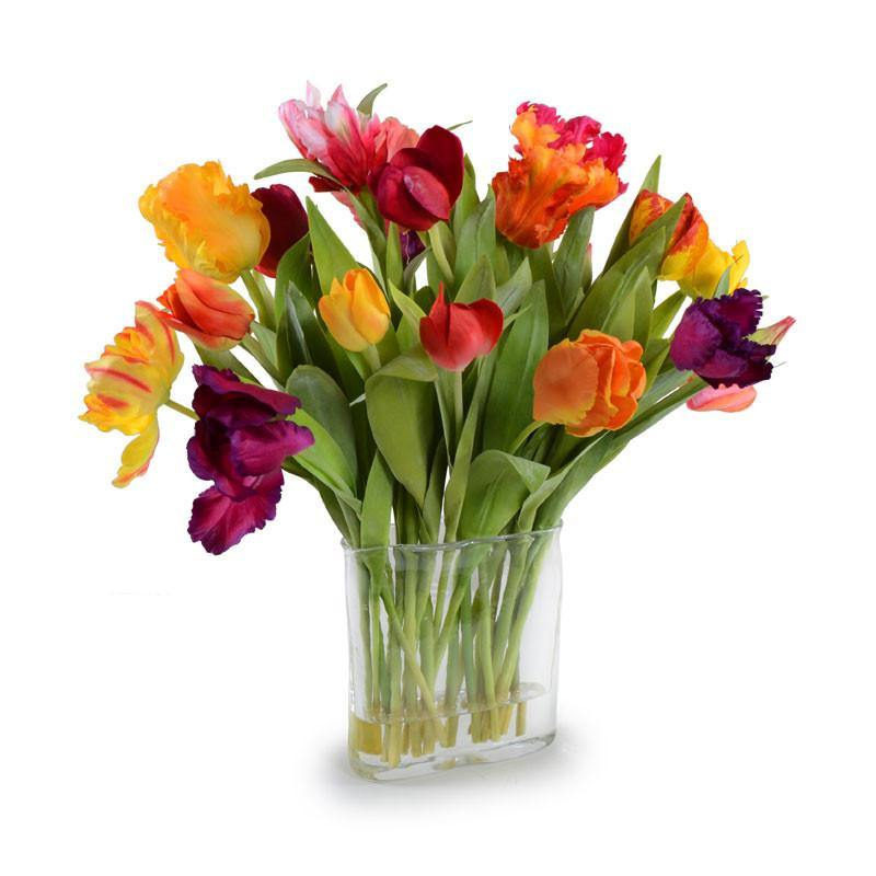 Tulips Arrangement