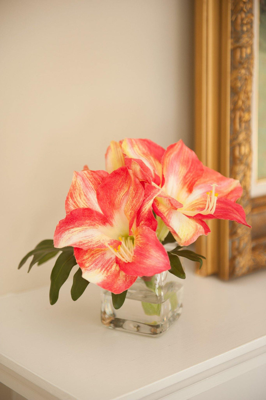 Amaryllis Cutting in Glass - New Growth Designs