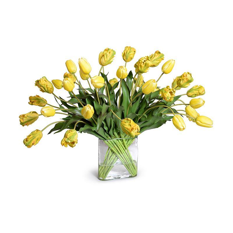 Tulip Arrangement - Yellow-Green - New Growth Designs