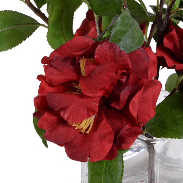 Camellia, Red - New Growth Designs