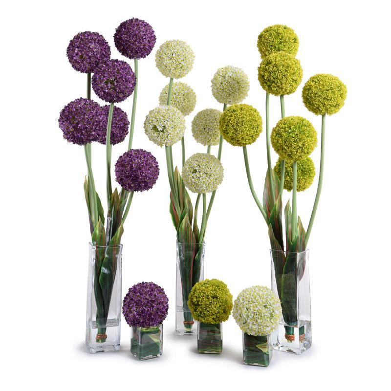 Allium Cube - Purple