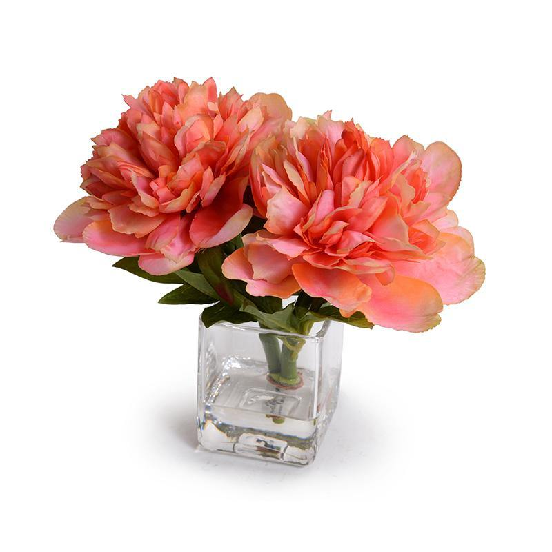 Peony Cutting - Coral - New Growth Designs