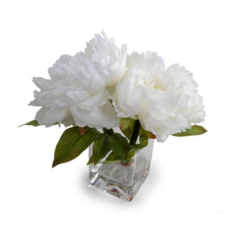 Peony Cutting - White - New Growth Designs