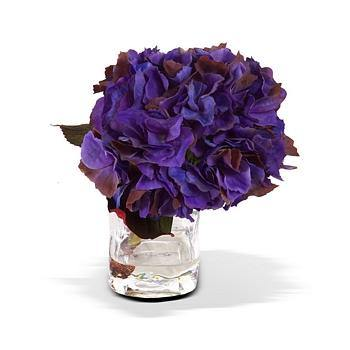 Hydrangea Cutting - Purple