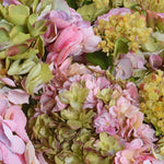 Hydrangea Centerpiece - Pink-Green - New Growth Designs