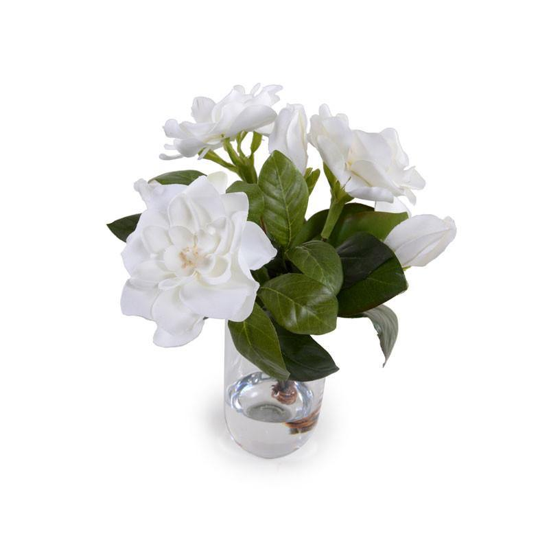 Gardenia Cutting - New Growth Designs