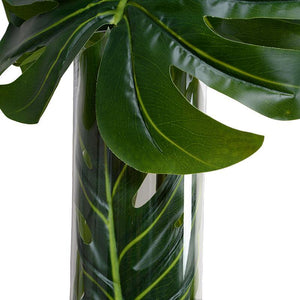 Large Monstera Leaf in Glass Cylinder - New Growth Designs