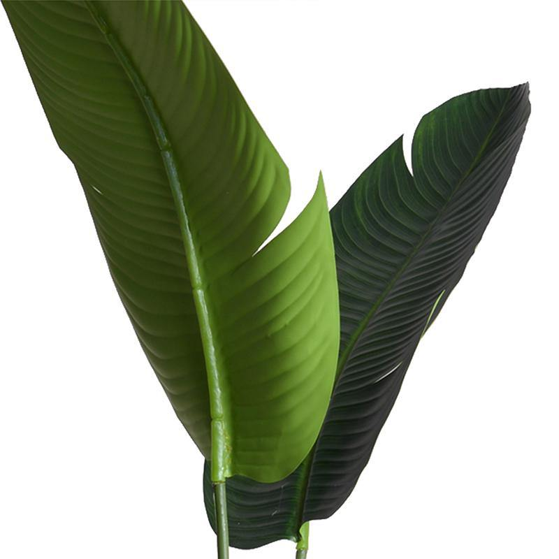 "Bird of Paradise (Stretlitzia), 70""H - New Growth Designs"