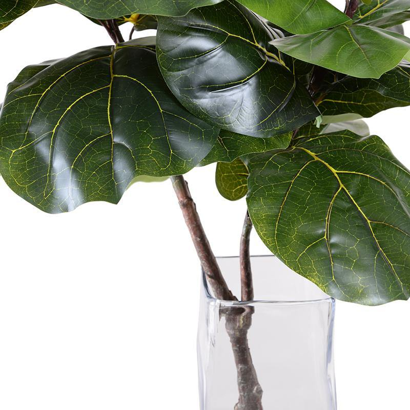 Fiddle Leaf Fig Branch in Glass Column - New Growth Designs