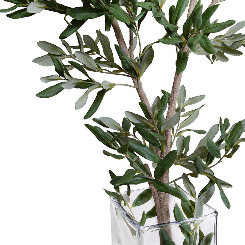 "Olive Branch in Glass, 58""H"