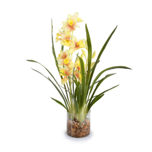 Cymbidium Orchid Vase - New Growth Designs