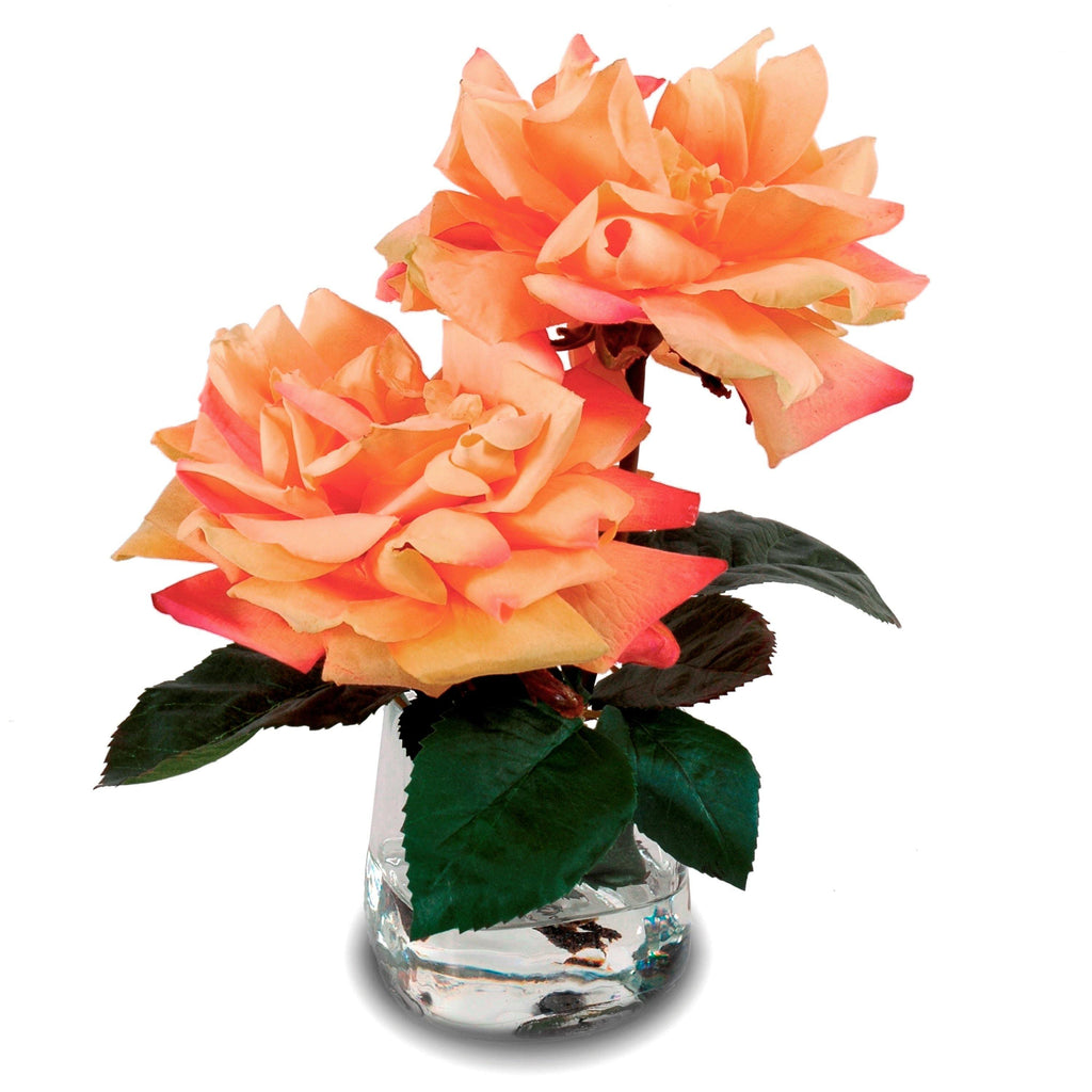 Rose Cutting in Glass - Orange - New Growth Designs