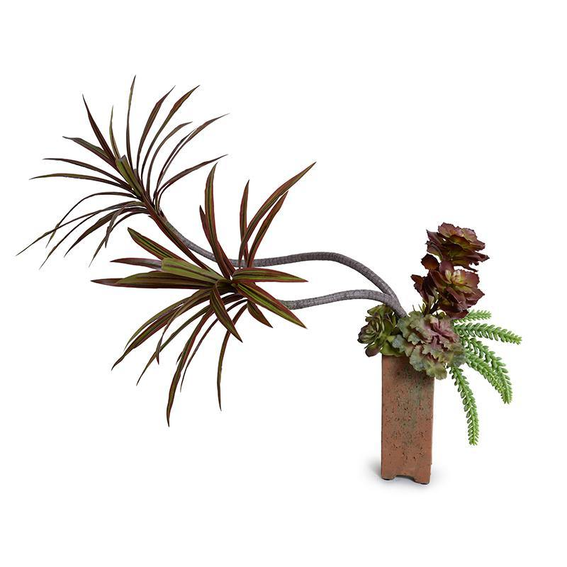 Dracaena Marginata, Succulents in Terracotta Column - New Growth Designs