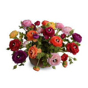 Ranunculus Centerpiece in Terracotta Bowl - Mixed - New Growth Designs