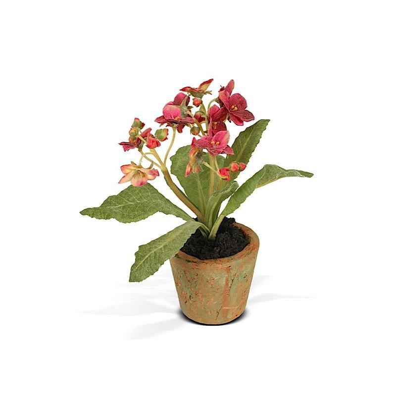 Aricula Mini Pot - Red