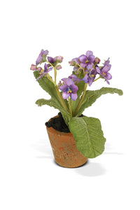 Aricula Mini Pot - Violet - New Growth Designs