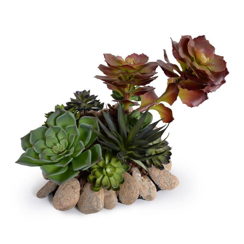 Succulents Rock Garden - New Growth Designs