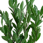 "Camellia Leaf Branches in Terracotta, 48""H - New Growth Designs"