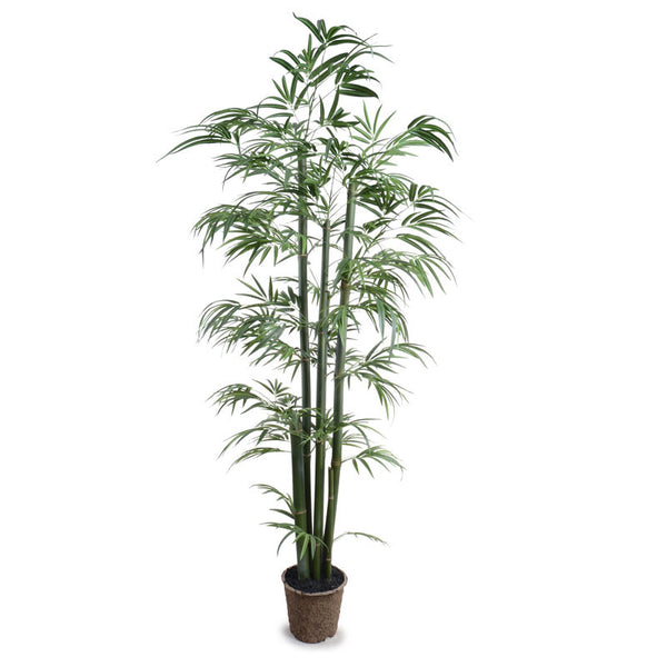 6.5' Green Bamboo Tree - New Growth Designs