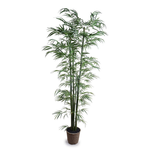 8.5' Green Bamboo Tree - New Growth Designs