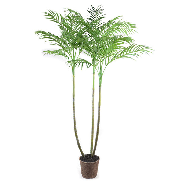8' Trident Palm Tree - New Growth Designs