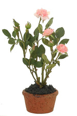 Rose Mini Pot - Pink