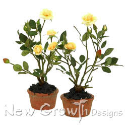 Rose Mini Pot - Yellow