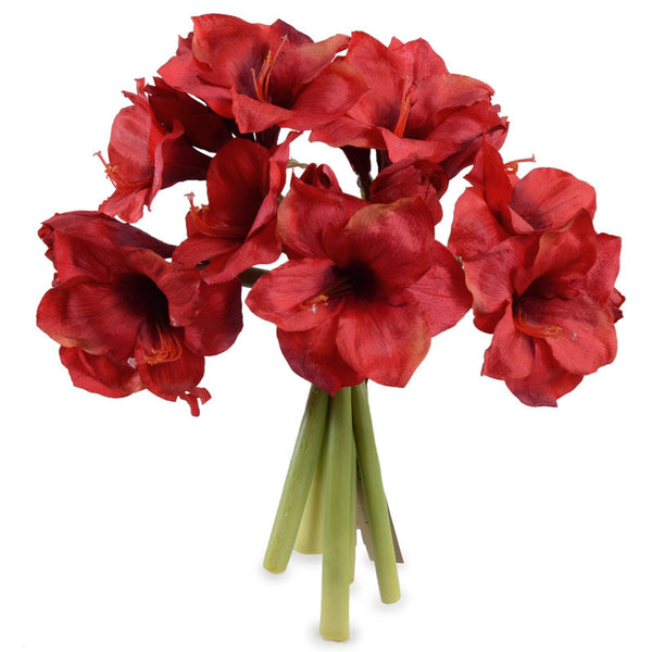 Amaryllis Wreath Bouquet, Red - New Growth Designs