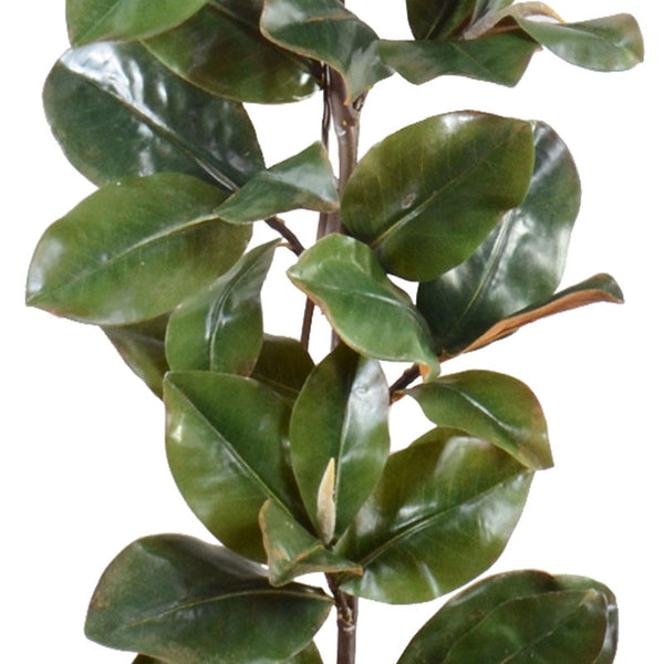 Classic Magnolia Leaf Garland - 6' - New Growth Designs
