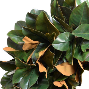 "28"" Magnolia Leaf Hand-built Wreath - New Growth Designs"