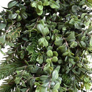 6' Boxwood, Fir Garland - New Growth Designs
