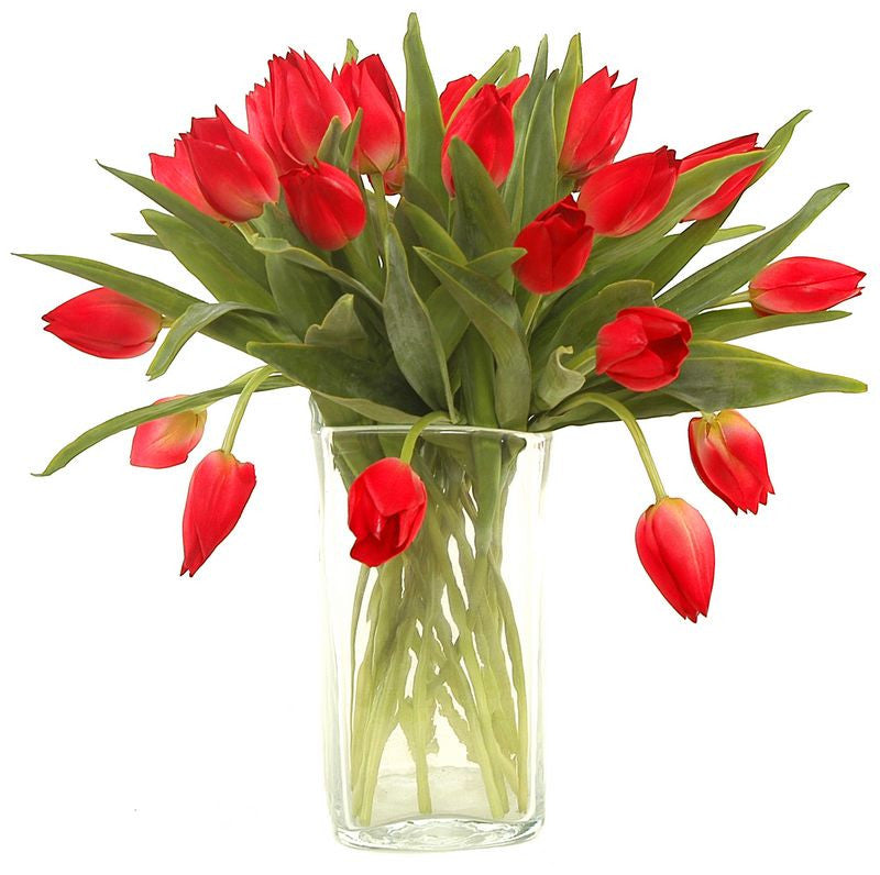 Tulip Stem, Red