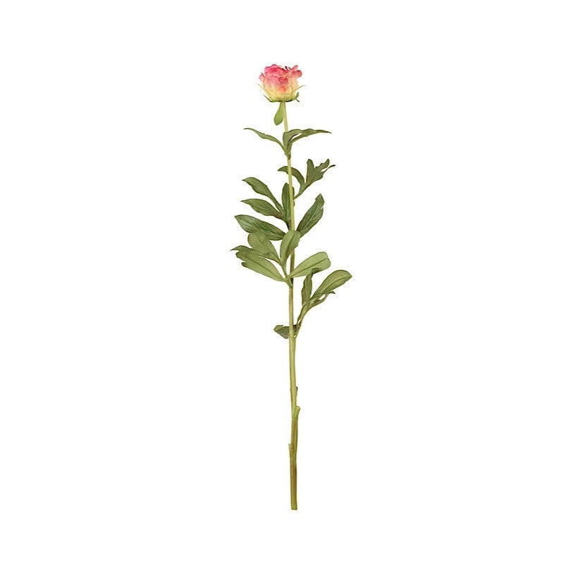 "Peony Bud Stem with Leaves, 31"" - New Growth Designs"