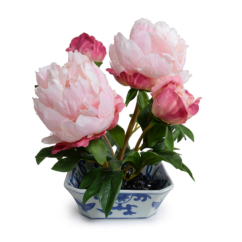 Peony Cutting in Blue & White - Pink