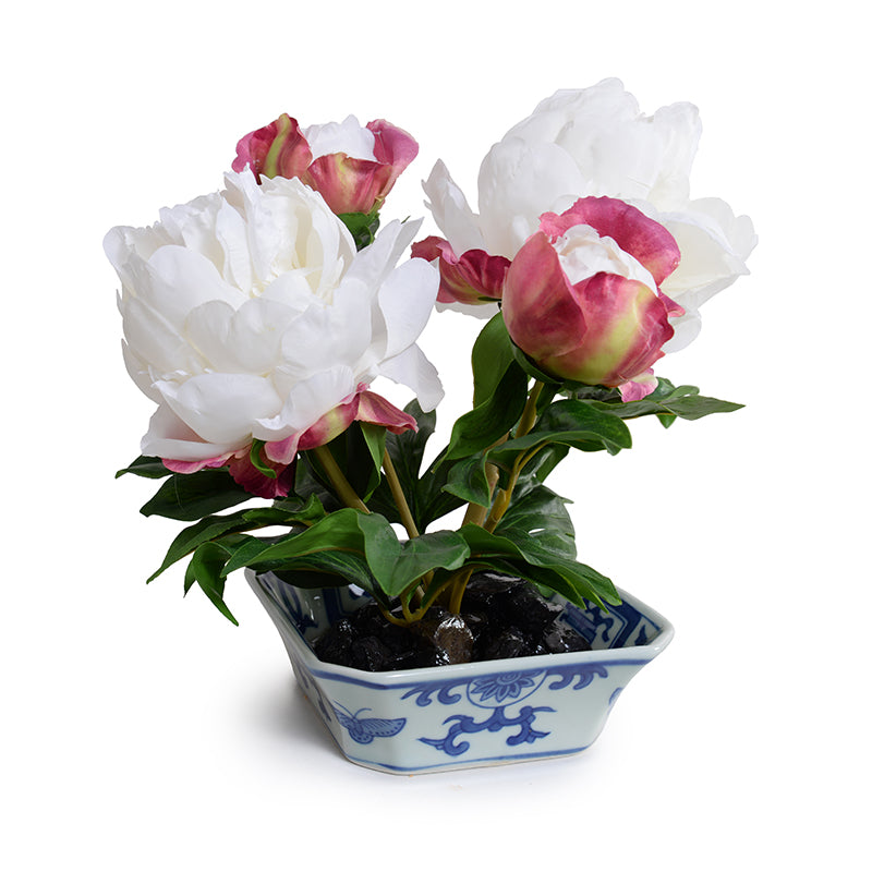 Peony Cutting in Blue & White - White