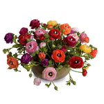 Ranunculus Centerpiece in Glazed Terracotta - Mixed - New Growth Designs