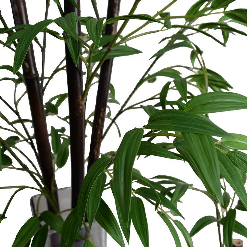 "Bamboo Stalk in Glass, 24""H - New Growth Designs"