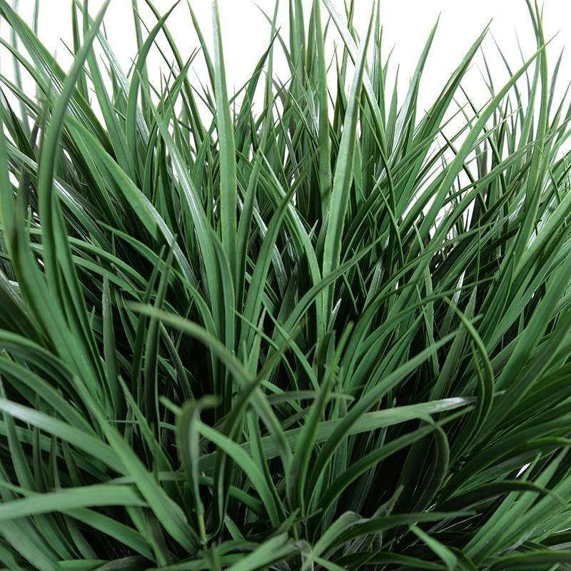 "Enduraleaf Orchard Grass in 9"" Pot"