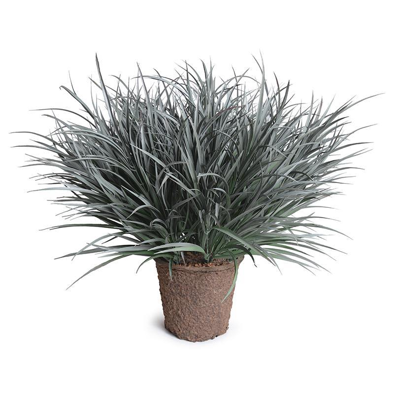 Orchard Grass - Gray Green