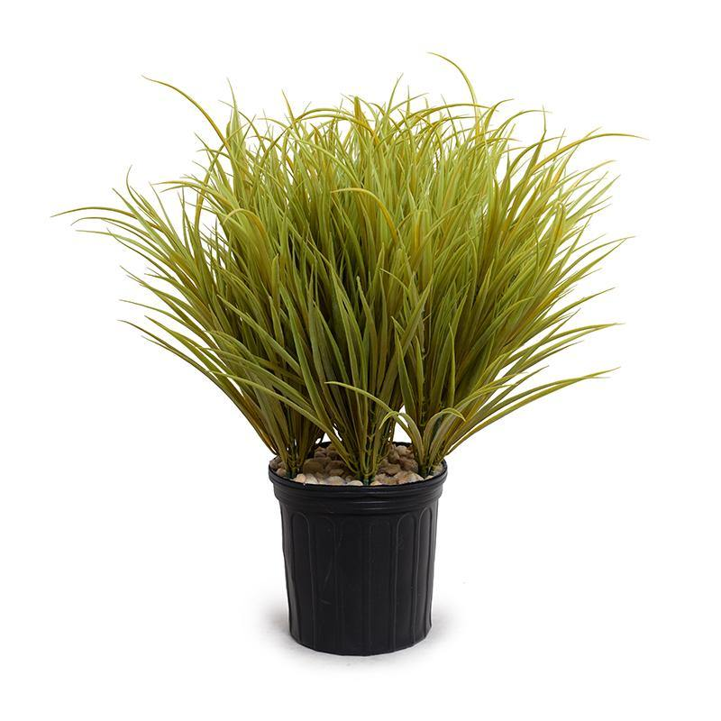Orchard Grass - Yellow Green - New Growth Designs