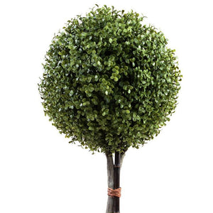 "11"" Boxwood Ball Topiary - New Growth Designs"
