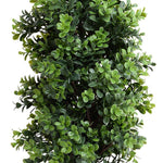 "Boxwood Shrub, Parterre, 26""H"