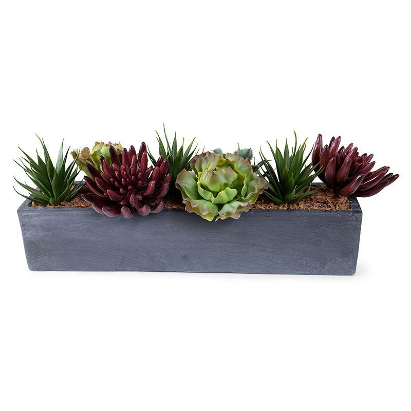 Mixed Succulents in Fiberglass Planter - New Growth Designs