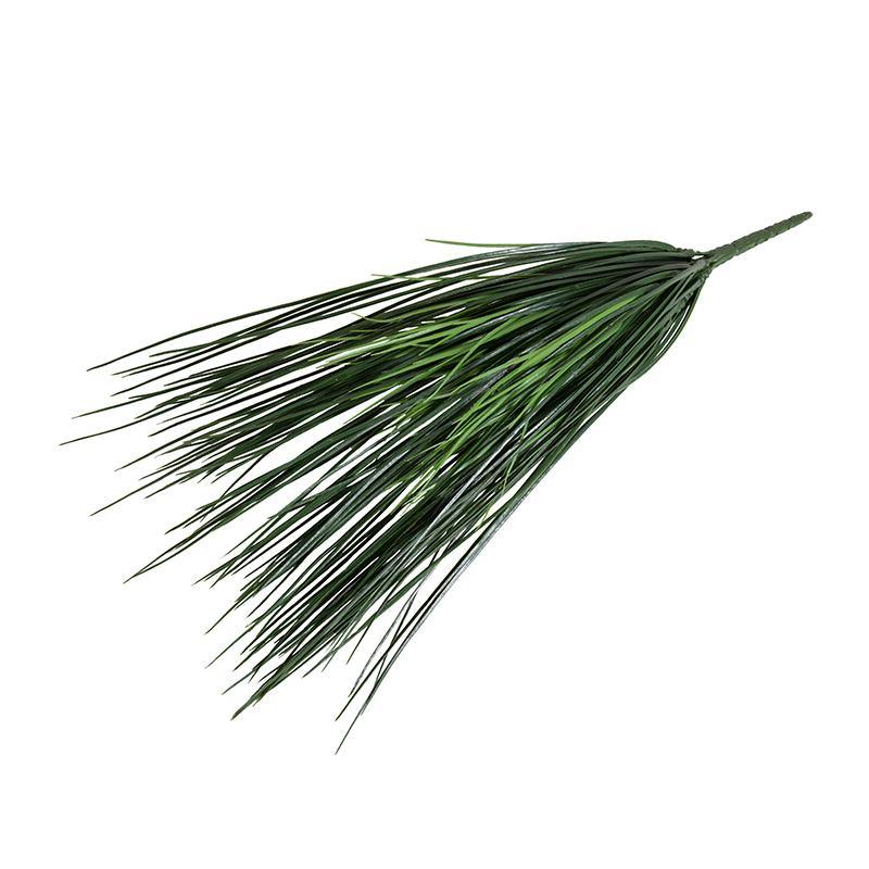 Onion Grass Spray